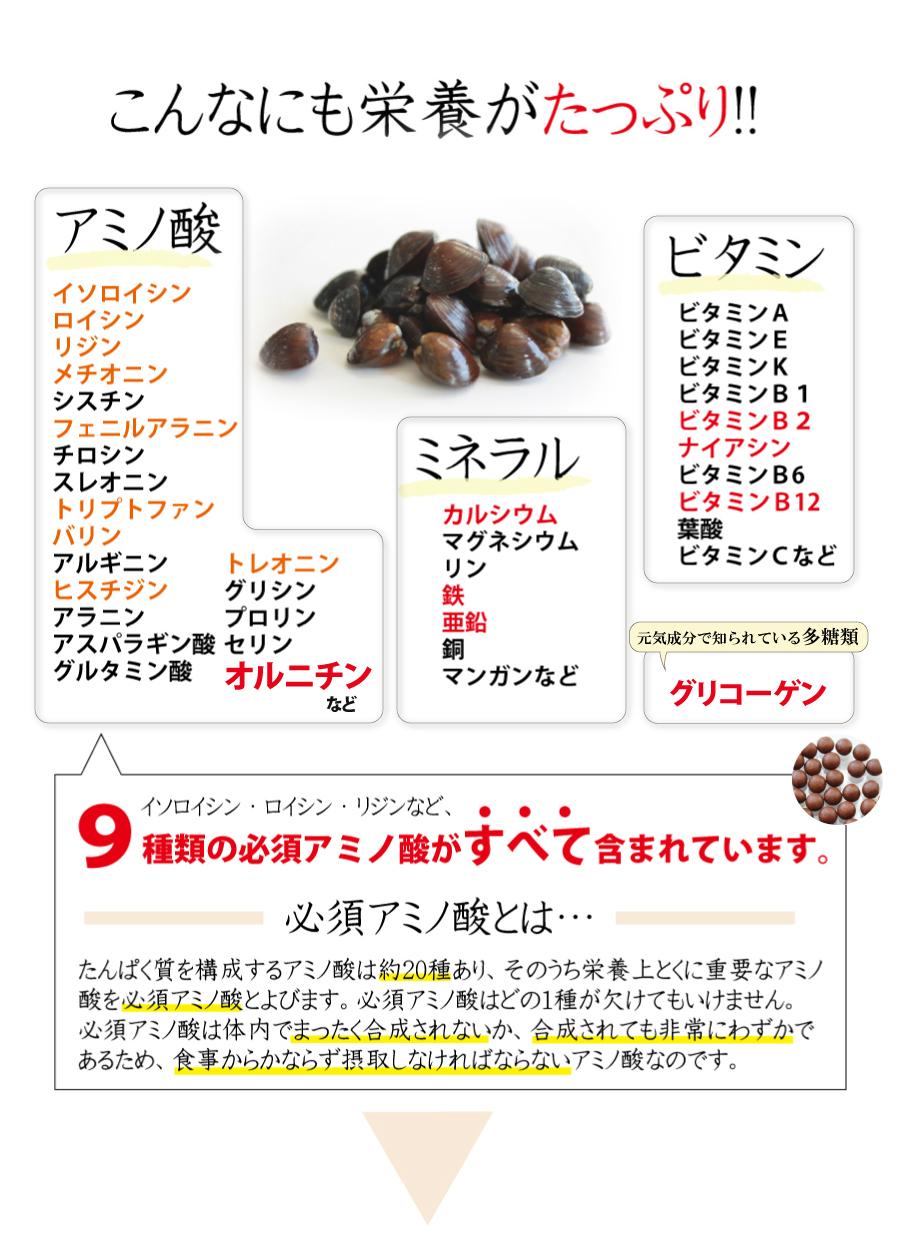 オルニチンだけではなく、栄養がたっぷり!!アミノ酸、ミネラル、ビタミン。9種類の必須アミノ酸がすべて含まれています。必須アミノ酸とは:たんぱく質を構成するアミノ酸は約20種あり、そのうち栄養上とくに重要なアミノ酸を必須アミノ酸と呼びます。食事からかならず摂取しなければならないアミノ酸なのです。
